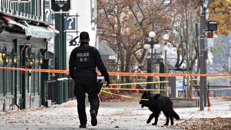 K-9 unit assists after Quebec City stabbing spree