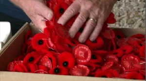 Canada's annual poppy campaign begins Friday, but Maritime Royal Canadian Legion branches are having a challenge finding volunteers.