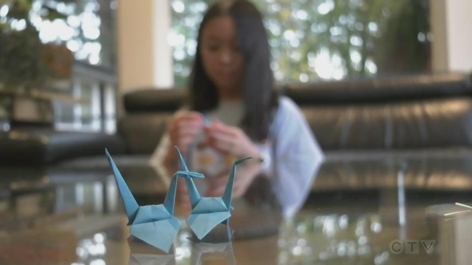 Sawatsky Sign-off- Myla's Cranes