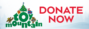 Toy Mountain 2020 Donate Online