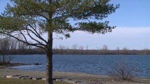 Ottawa weather fall sunny clear sky tree water