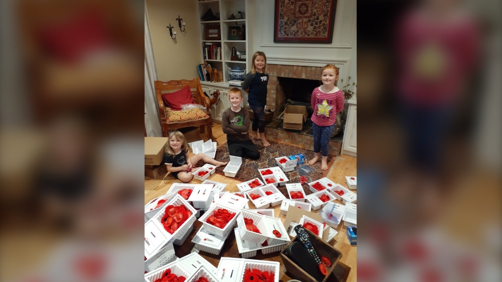 Wolfville Legion Poppy Campaign