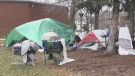 For the second time in less than two months, a tent city has popped up in front of North Bay city hall. Nov. 16/20 (Eric Taschner/CTV Northern Ontario)