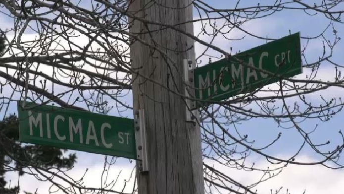 Halifax Regional Coun. Sam Austin is also going to ask for a new name for a portion of Micmac Boulevard that acknowledges the Black community that existed there two centuries ago.