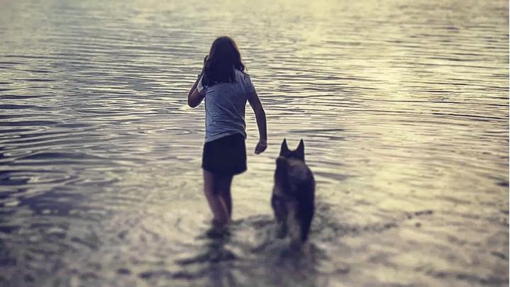 Diamond, Michaud family dog