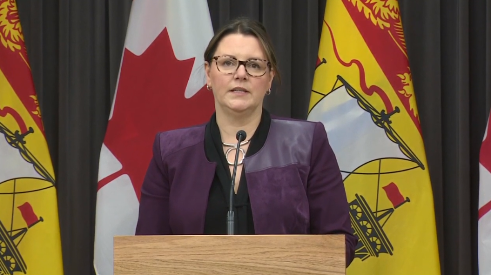 New Brunswick chief medical officer of health Dr. Jennifer Russell provides an update on COVID-19 at a Nov. 19 news conference in Fredericton.