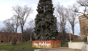 With annual crowds of more than 5,000 people to Sault Ste. Marie's Christmas tree light up and Moonlight Magic, the city and downtown association have been forced to make big changes, including cancelling the light up. (Christian D'Avino/CTV News)