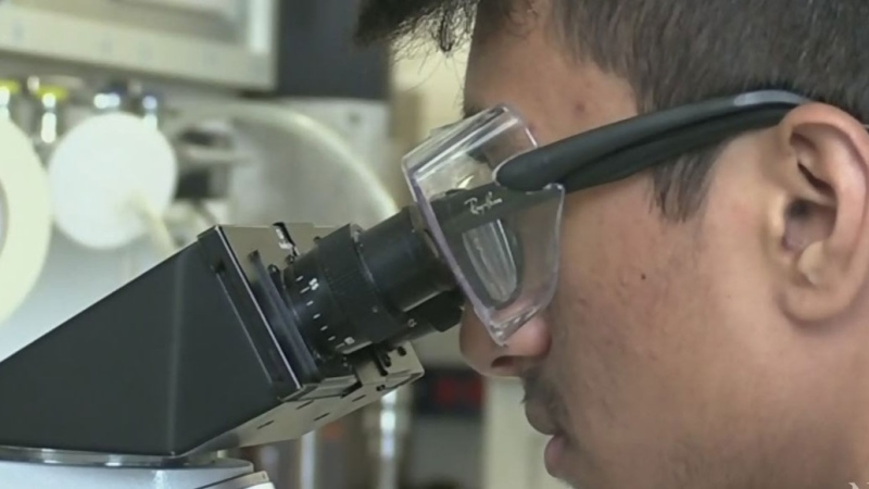 Research team closer to cure for Type 1 diabetes