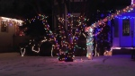 Calgary homeowners and business owners have launched a website promoting holiday lights.