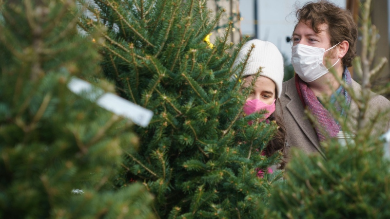 A couple shops for a Christmas tree at a farmers market in Montreal, Friday, Nov. 20, 2020. THE CANADIAN PRESS/Paul Chiasson