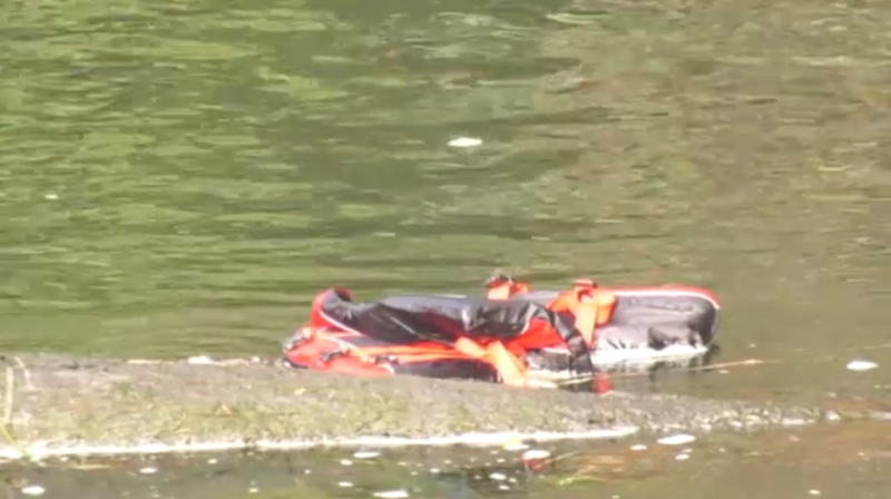 Two women and a dog were out for a paddle in the Gorge Waterway Saturday morning when they somehow ended up in the water. (CTV)