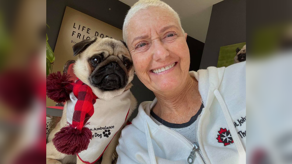 Tracey Silverthorn and Zombie Pug hold a virtual visit (Source: Tracey Silverthorn)