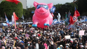 People hold a pig model with 'I am a ractopamine pig' written on it during a protest in Taipei, Taiwan, Sunday, Nov. 22. 2020. (AP Photo/Chiang Ying-ying)