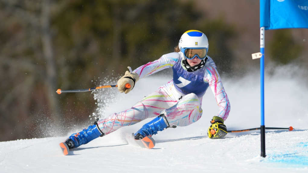 Ski organizations in Quebec want to open