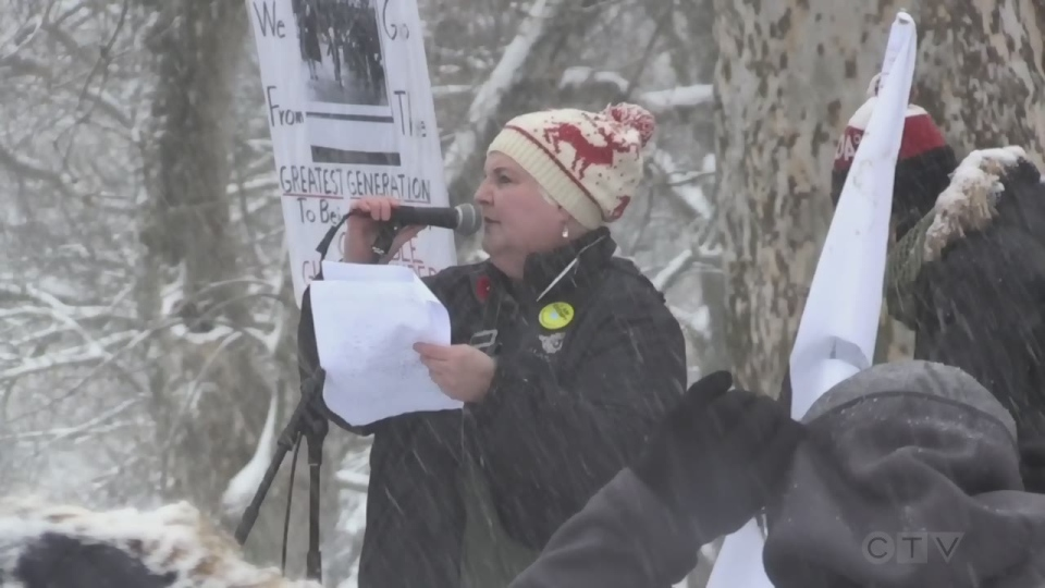 London Ont. Freedom March on Nov. 22, 2020. (Jordyn Read/CTV London)