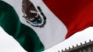 The Mexican flag is waved in front of the National Palace during a protest in Mexico City, Saturday, May 30, 2020. (AP Photo/Rebecca Blackwell)