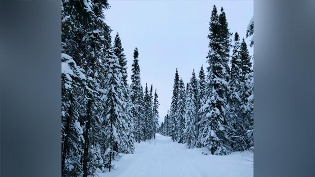 One the many snowmobile trails outside Gillam. Photo by Laura Kirkness.