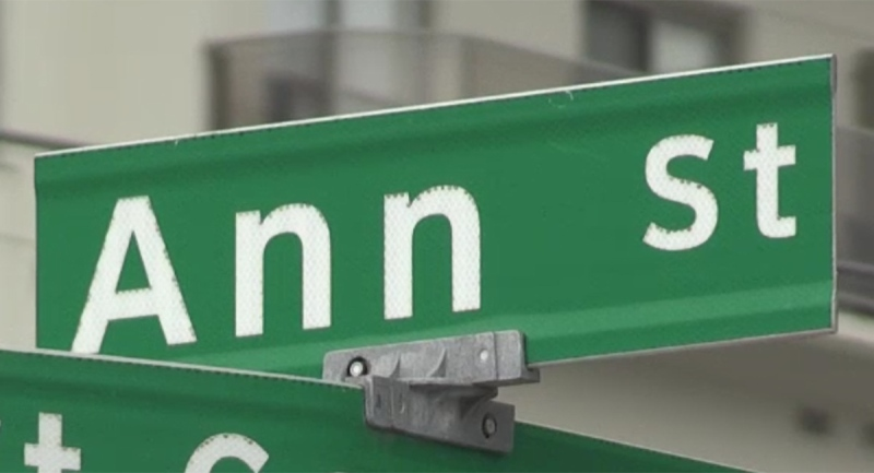 A sign for Ann Street in London, Ont. is seen Monday, Nov. 23, 2020. (Jim Knight / CTV News)