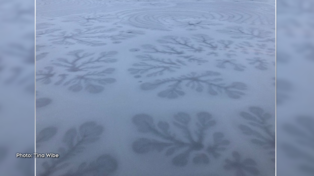 This was the ice surface on the canal early morning! (Tina Wibe/CTV Viewer)