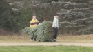 Christmas tree sellers already seeing demand