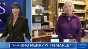 Making merry with maple