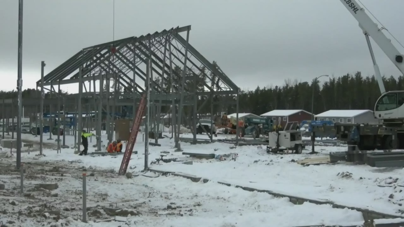 CTV News Prince Albert for November 24, 2020