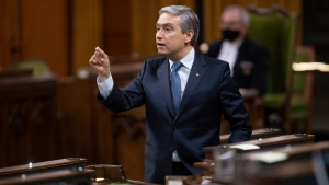 Foreign Affairs Minister Francois-Philippe Champagne responds to a question during Question Period in the House of Commons Monday November 23, 2020 in Ottawa. (THE CANADIAN PRESS / Adrian Wyld)