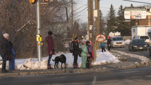 Students wait to cross the street at the intersection of Daniel Street and Edey Street in Arnprior.