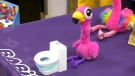 The Little Live Pets Gotta Go Flamingo costs $39.99.