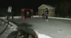 Backyard rinks booming during lockdown