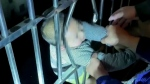 Child falls from building in China, rescued by nei