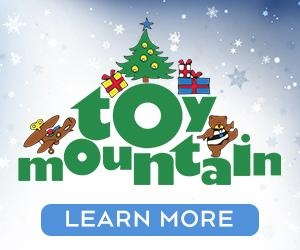 Toy Mountain Big Box