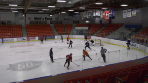 The province's decision to cancel sports in Alberta as part of the recently announced COVID-19-related restrictions has halted the AJHL season (file)