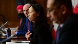Chief Public Health Officer Dr. Theresa Tam and Dr. Howard Njoo, Deputy Chief Public Health Officer, provide an update on the COVID pandemic in Ottawa on Tuesday, Nov. 24, 2020, as they are joined by Minister of Innovation, Science and Industry Navdeep Bains, left, and President of the Treasury Board Jean-Yves Duclos, second from left. (Sean Kilpatrick/ The Canadian Press)