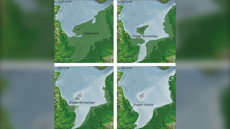 North Sea coastline reconstructions for: a) Doggerland c. 10 000 cal BP; b) Dogger Archipelago c. 9000 cal BP; c) Dogger Archipelago c. 8200 cal BP; d) Dogger Littoral c. 7000 cal BP (Image by M. Muru/Courtesy Antiquity)