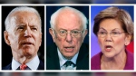 This panel of 2020 file photos show Democratic presidential candidate former Vice President Joe Biden, left, Sen. Bernie Sanders, I-Vt., center, and Sen. Elizabeth Warren, D-Mass. (AP Photos, File)