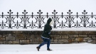 A pedestrian makes their way through the snow in downtown Ottawa on Wednesday, Nov. 25, 2020. (Sean Kilpatrick/THE CANADIAN PRESS)