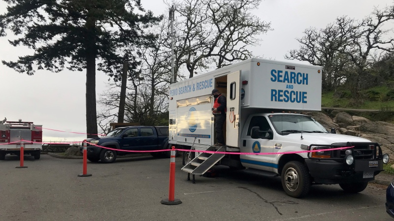 Police and volunteers have been searching and soliciting tips from the public but Sean Hart remains missing Thursday. (CTV News)