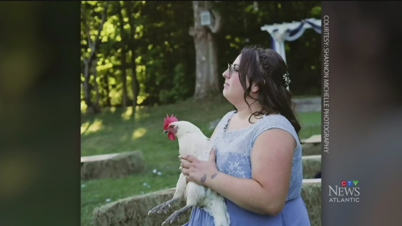 N.S. woman goes viral with fowl play