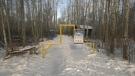 Preeceville Lion's Club renovates trails