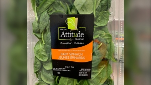 Fresh Attitude baby spinach has been recalled due to a possible salmonella risk. SOURCE: CFIA