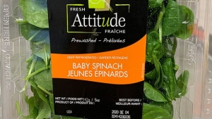 Fresh Attitude brand Baby Spinach recalled due to Salmonella risk. (Canadian Food Inspection Agency / HO)