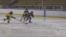 House league players back on ice