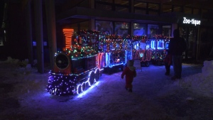 Christmas lights at Valley Zoo