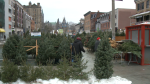 Shoppers look at Christmas trees for sale in the ByWard Market, Nov. 27, 2020. (Jim O'Grady / CTV News Ottawa)