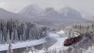 A Canadian Pacific freight train travels around Morant's Curve near Baker Creek, Alta. on Monday December 1, 2014. THE CANADIAN PRESS/Frank Gunn