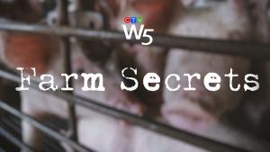 Farm secrets