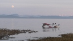Images from the scene show the aircraft partially submerged in water upside down. (CTV)