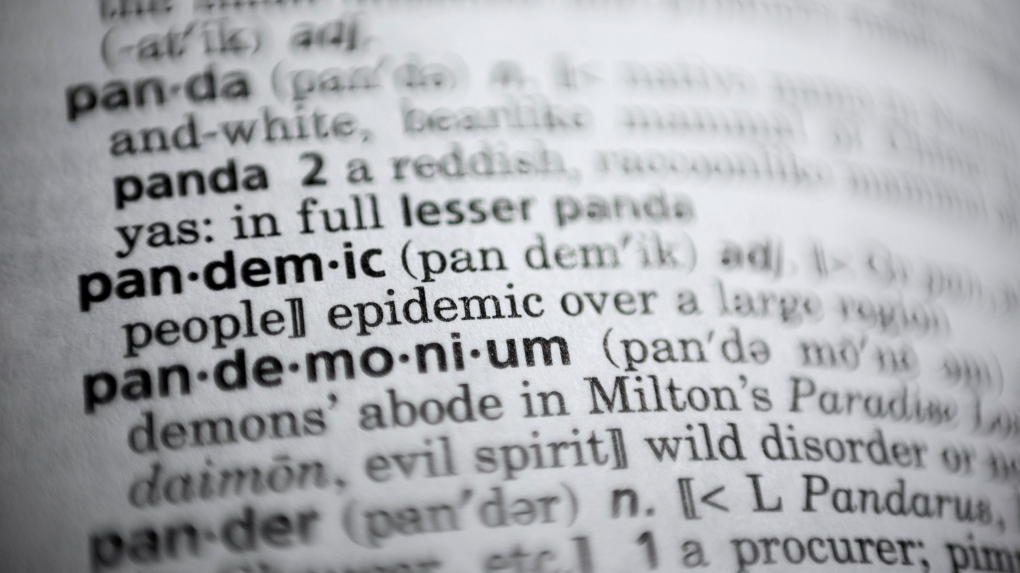 pandemic dictionary