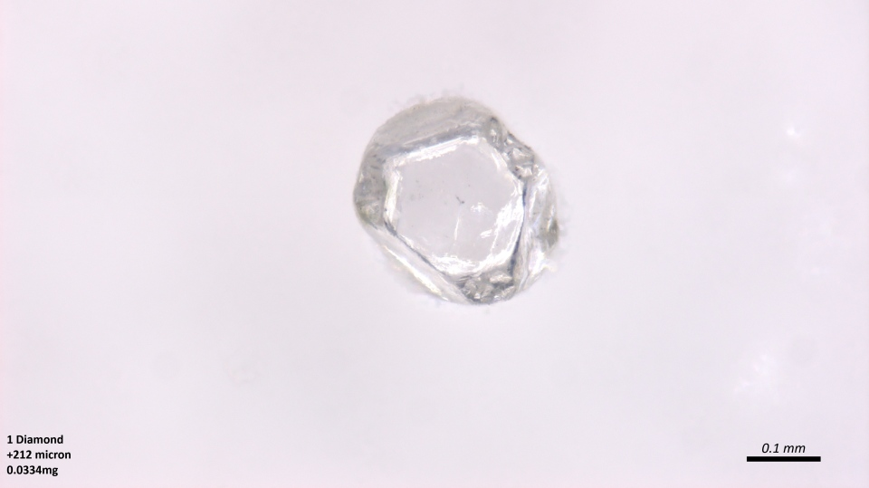 One of the diamonds is seen in this handout photo. (University of Alberta)